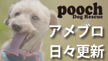 Pooch Dog Rescue アメーバブログ